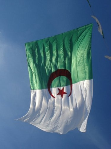 L'investissement à l'étranger des entreprises Algériennes